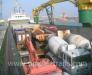 Морская перевозка колёсной техники.
