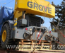 Delivery of construction cranes from Europe, Turkey, USA to CIS countries, Afghanistan, Mongolia