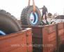 Transporturi feroviare de marfa Romania - CSI