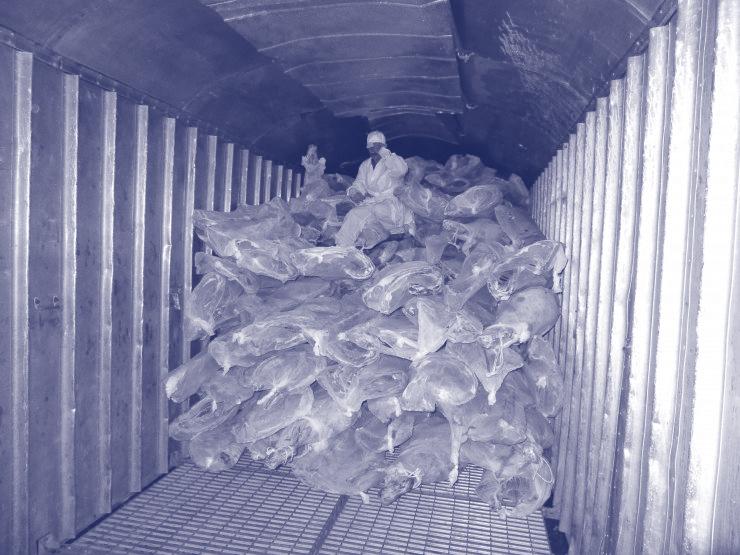 Transport von gefrorenem Fleisch und Fisch durch den Hafen Poti Georgien.