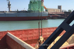 Delivery of soybean meal and soybeans from Argentina, Brazil, USA, India to the port of Poti Georgia