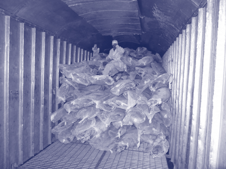Перевозка замороженного мяса и рыбы через порт Поти Грузия.